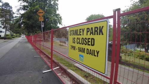 Who is to blame for aggressive coyotes in Stanley Park?