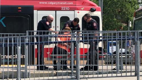 Man in police custody after reports of a gun on Calgary LRT