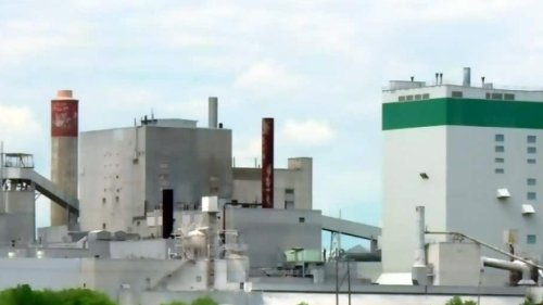 Sask. approves timber allocations for Prince Albert pulp mill restart