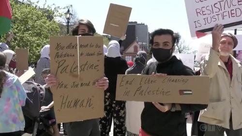 Rallies in solidarity with Palestinians held across the Maritimes