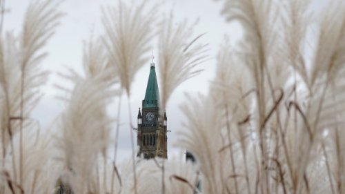 COVID-19 in Ottawa: Fast Facts for Oct. 20, 2021