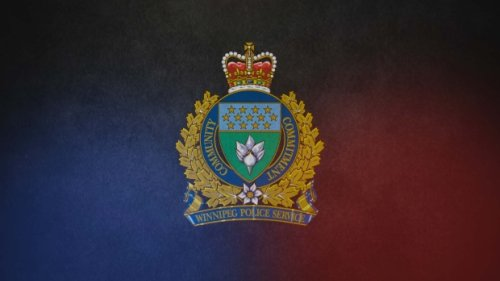 Winnipeg police investigate early morning homicide