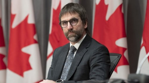 Minister suggests with Bill C-10, regulations could apply to accounts with a large enough following