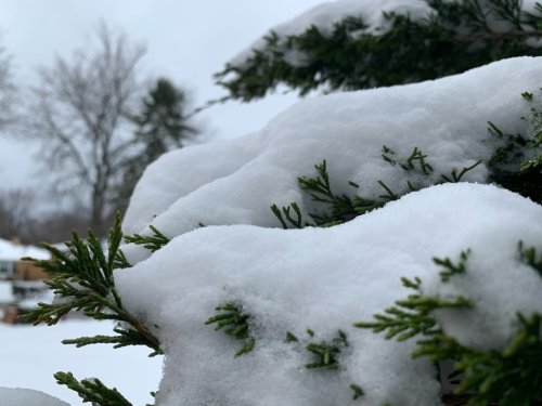 A warmer than average winter expected, when will snow start flying?