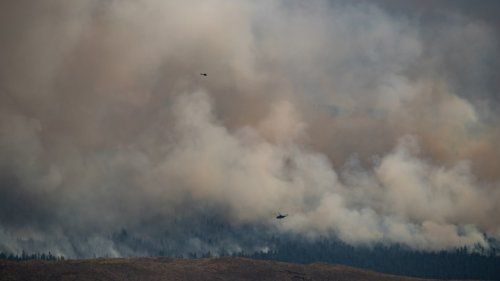 B.C. wildfires: Fluid conditions prompt evacuations for some, relief for others