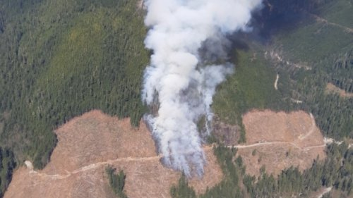 Firefighters, helicopters battling human-caused forest fire on Vancouver Island