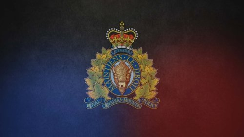 Police dog used in arrest of man who allegedly stole a car at gunpoint: RCMP