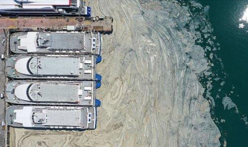 Marmara Denizi öldü: Avrupa medyası, müsilajın döneceği tarihi açıkladı
