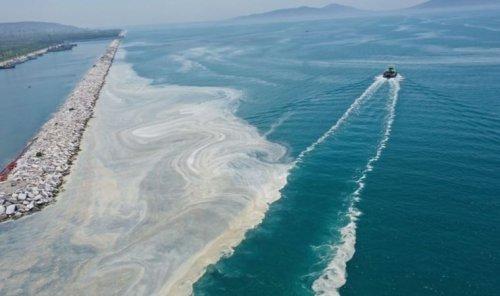 Son veriler paylaşıldı: Marmara Denizi'nde müsilajdan sonra oksijen azlığı tehdidi