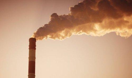 İklim değişikliği: BM'den Dünya yanlış yolda ilerliyor uyarısı