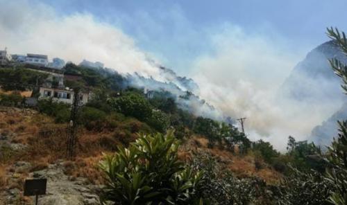 Son dakika... Hatay'da yangın: Alevler evlere sıçradı
