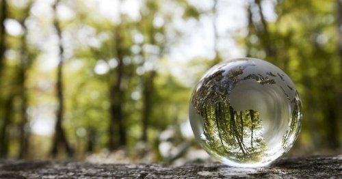 o2 startet Handyankauf für mehr Nachhaltigkeit ⊂·⊃ CURVED.de