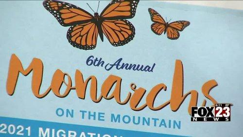 'Monarchs on the Mountain' festival returns to Turkey Mountain