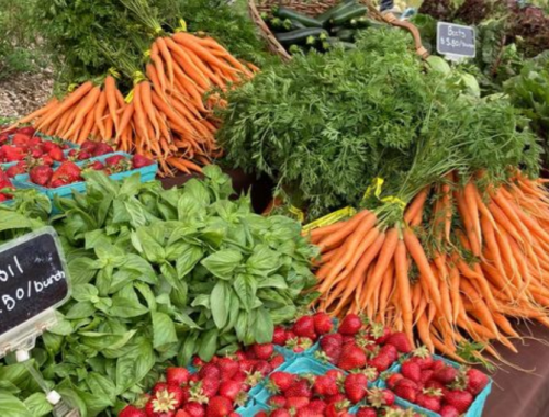 Your Guide to Portland Farmers Markets: Summer 2021 Edition - EverOut Portland