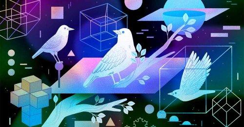 The Journey to Define Dimension | Quanta Magazine