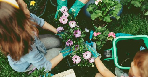 10 Benefits of Gardening (Besides a Yard Full of Gorgeous Flowers)