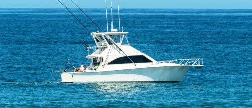 Man Catches A Record 876-Pound Bluefin Tuna