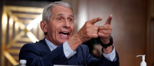 EXCLUSIVE: Bipartisan Congressional Group Presses Fauci On Abusive Animal Testing At His Agency