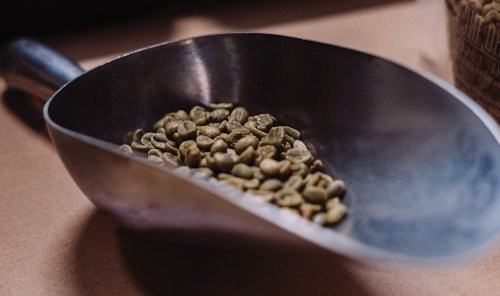 Evolving the Concept of Specialty Coffee, Part I: Green Coffee Quality