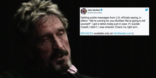 'If I suicide myself, I didn't': John McAfee's death sparks conspiracy theories after old tweets resurface, giant 'Q' posted to his Instagram