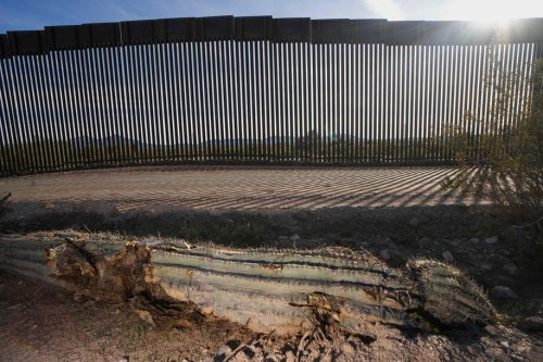 Environmental activist calls damage that Trump's wall has inflicted on the land 'incalculable'