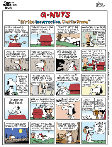 """Cartoon: Q-Nuts - """"It's the Insurrection, Charlie Brown!"""""""