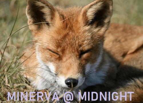 Minerva @ Midnight: no let up in Russian disinformation