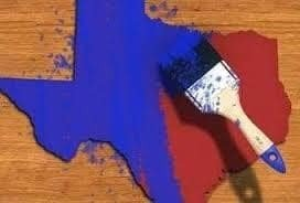 Voter Concerns Expressed in TX-06 Last Weekend (Tales from the Ground)