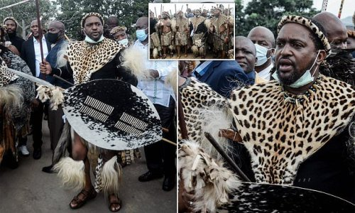 New King of the Zulus is whisked away from his public unveiling