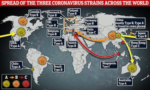 There are THREE separate types of coronavirus
