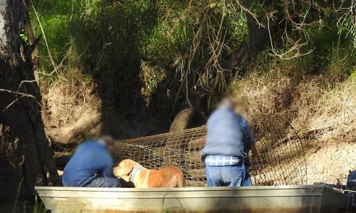 Fisherman banned for five years after using illegal traps