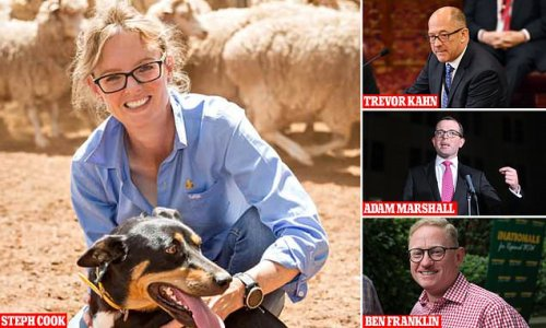 Four politicians forced into isolation after dining at Sydney eatery