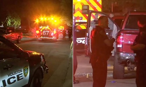Man urinating in Houston street fatally shot by confronting residents