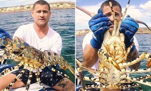 Fisherman catches gigantic crayfish in Australia