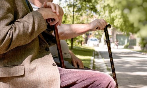 Scientists develop an inflammatory ageing CLOCK to predict frailty