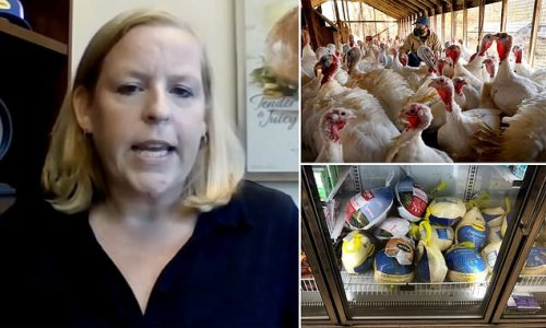 Thanksgiving is stuffed! Turkey shortage looms due to lack of workers