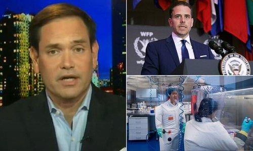 Rubio slams Big Tech for censuring COVID and Hunter Biden stories