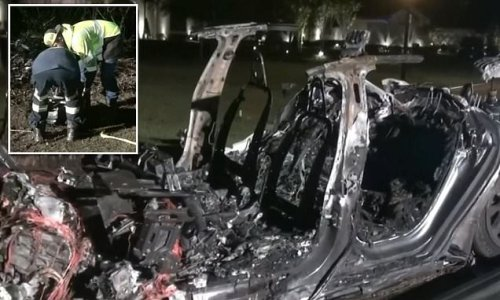 Two die after Tesla 'on auto-pilot with no one driving' crashes