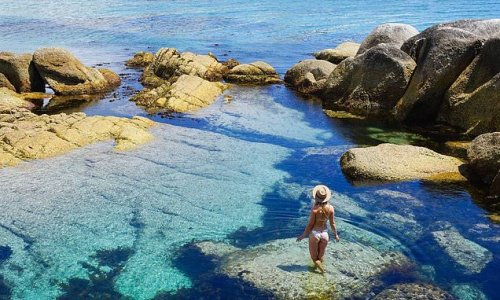 Tasmania to lift coronavirus travel restrictions with Melbourne