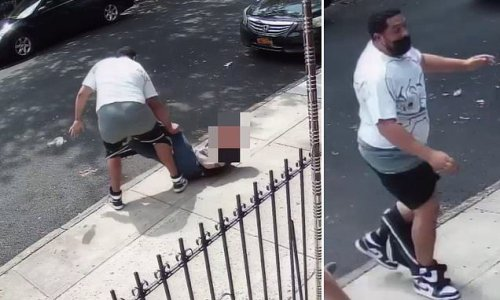 Thief loses his shorts in failed bid to rob passerby in Brooklyn