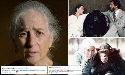 Viewers are left 'in floods of tears' after Lucy the Human Chimp