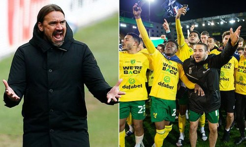 Norwich can build for Premier League future as patience pays-off