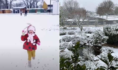 Cold snap sees heavy snowfall from NSW Northern Tablelands