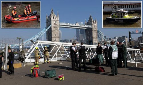 Woman 'jumped into River Thames after missing 13-year-old schoolboy'