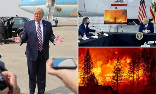 Gavin Newsom tells Trump climate change is real in fire briefing