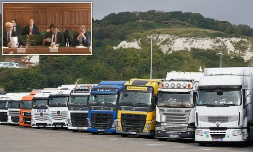 Lorry drivers fall by 53,000 in four years: ONS figures show 17% drop