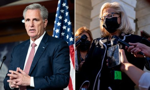 Kevin McCarthy tells GOPers working for Liz Cheney: It's her or me