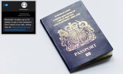 Travellers are warned they face waiting 10 WEEKS to get a new passport