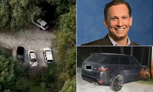 Missing United executive's remains found hanging from tree in preserve