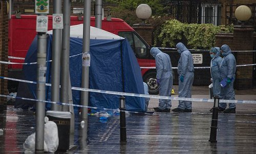 Man in his 30s dies after shots are fired outside bar in Hackney